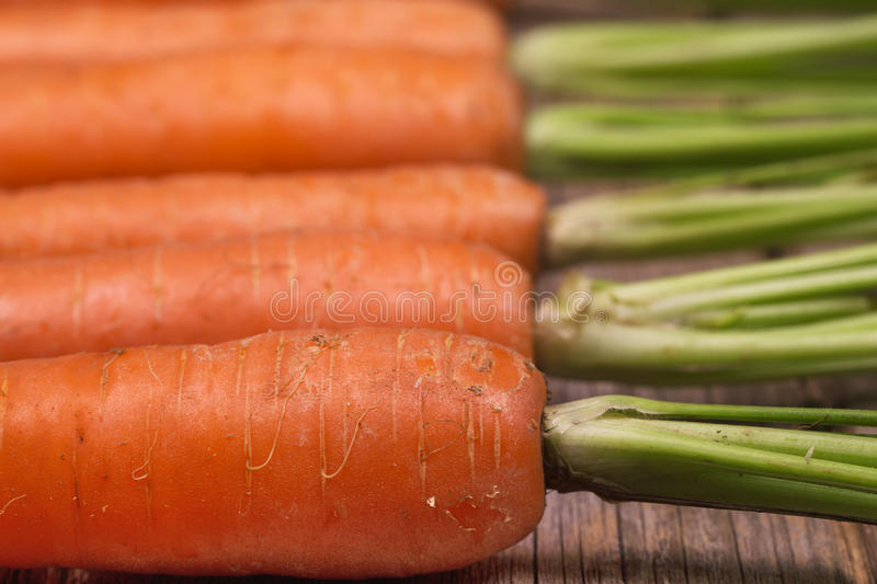 Download Carrots closeup stock image. Image of ingredient, freshness - 33392023
