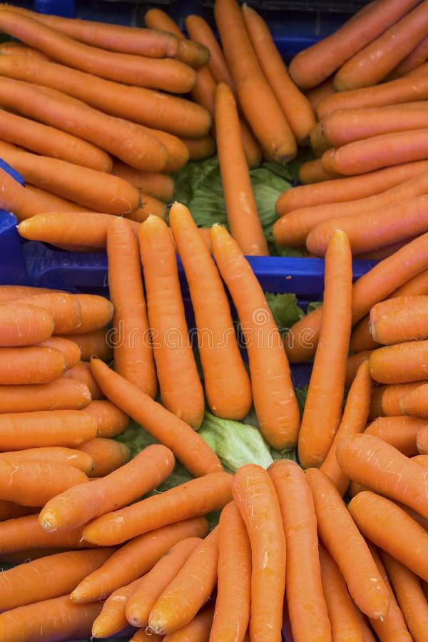 Carrots. Fresh organic carrots. Background texture of carrots stock images