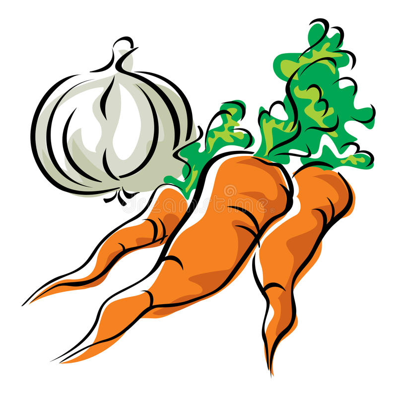 Download Carrots and garlic stock vector. Image of root, icon - 18374552
