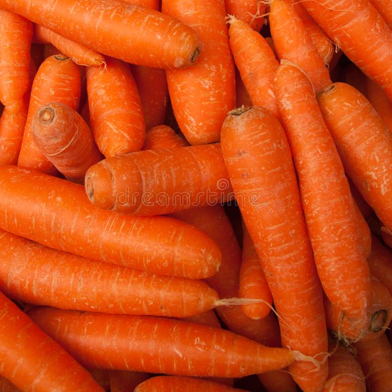 The carrots on the market. Ready and healty. Ready for cakes royalty free stock photography