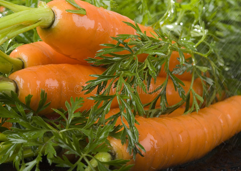Download The carrots & rain stock image. Image of colour, freestanding - 2316683