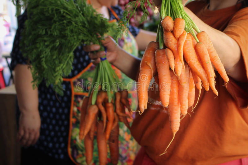 Carrots for Sale. A horizontal of carrots being offered for sale at a farmer's market stock photography
