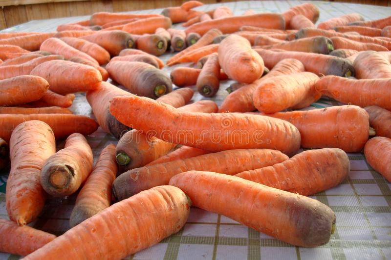 Carrots on a table. Crop of carrots on a table royalty free stock image