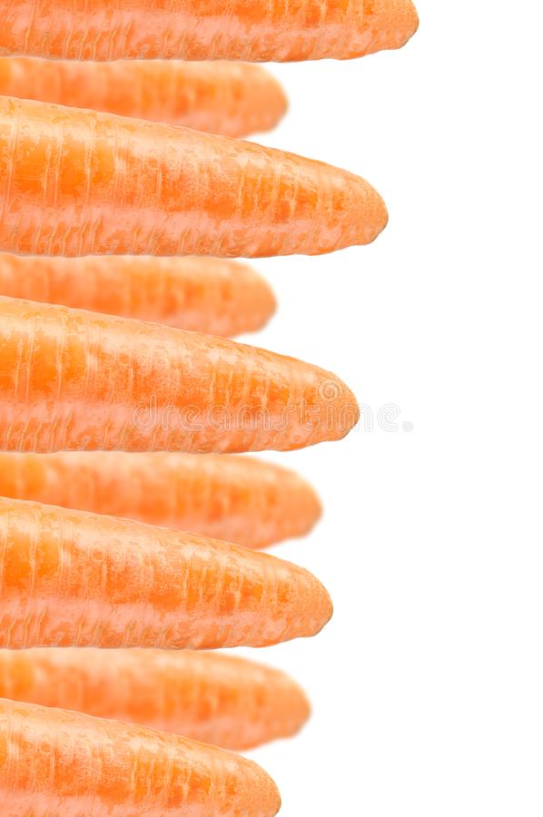 Download Carrots On White Background Stock Illustration - Illustration of taste, nobody: 23698958
