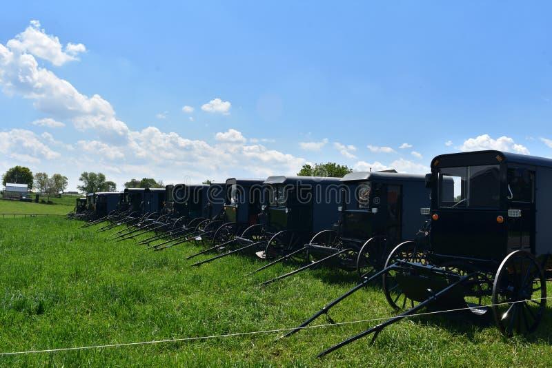 Carrozzini trainati da cavalli parcheggiati su un'azienda agricola in un campo fotografia stock