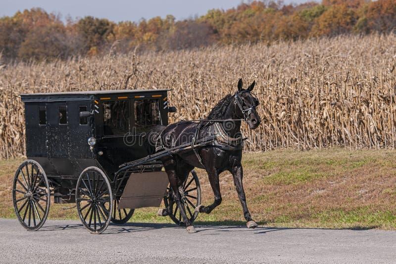 Carrozzino di Amish su una strada campestre immagini stock