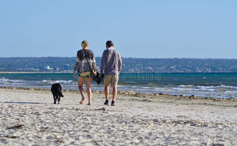 Picture of a couple with their dog walking at the beach royalty free stock image