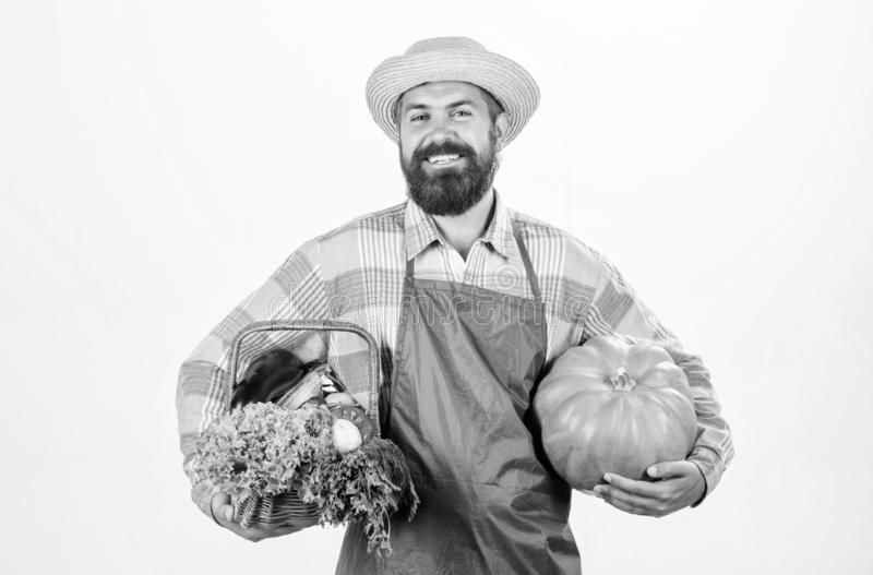 Carrying a healthy bag. organic and natural food. happy halloween. man chef with rich autumn crop. seasonal vitamin food. Useful fruit and vegetable. harvest royalty free stock images