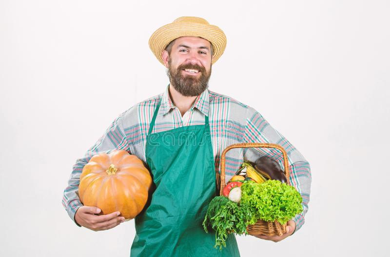 Carrying a healthy bag. organic and natural food. happy halloween. man chef with rich autumn crop. seasonal vitamin food. Useful fruit and vegetable. harvest stock photo