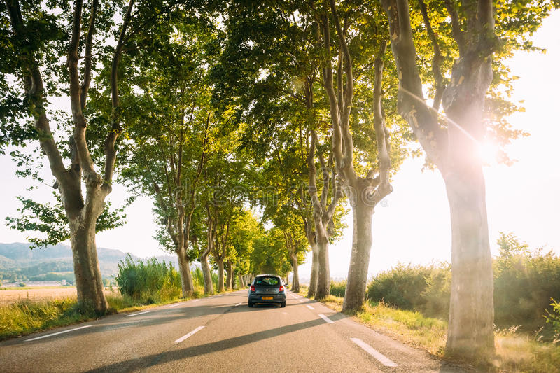 Cars driving on a country road lined with trees. Bright sunlight royalty free stock photo