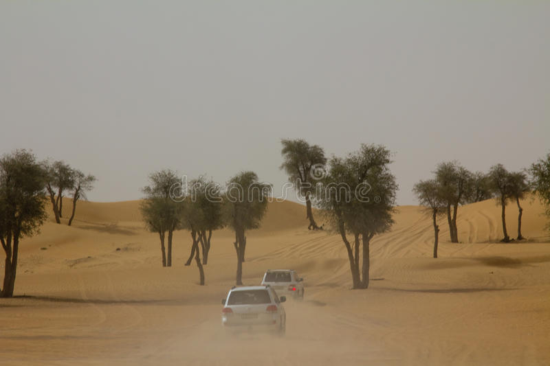 Cars driving to the safari camp after dune bashing in Dubai, UAE.  stock image