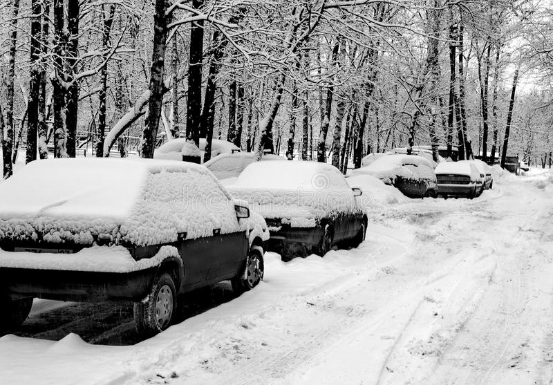 Cars under snow in black and white. B&W Parked cars covered with snow royalty free stock image