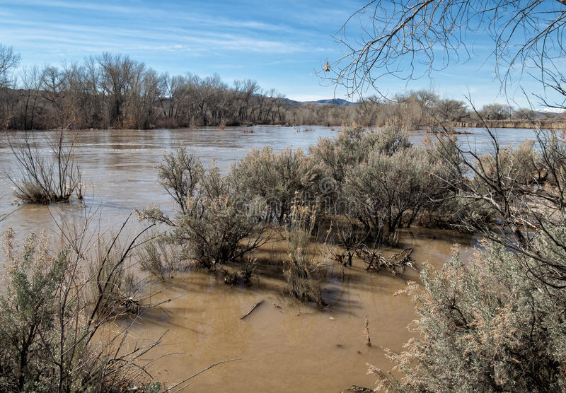 Carson river near flood stage. The Carson River in northern Nevada, flooding after heavy rains stock photography