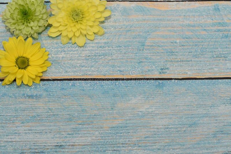 Cartão bonito ao dia da mulher Flores amarelas e verdes no fundo de madeira azul Vista da parte superior Espaço para o texto fotos de stock royalty free