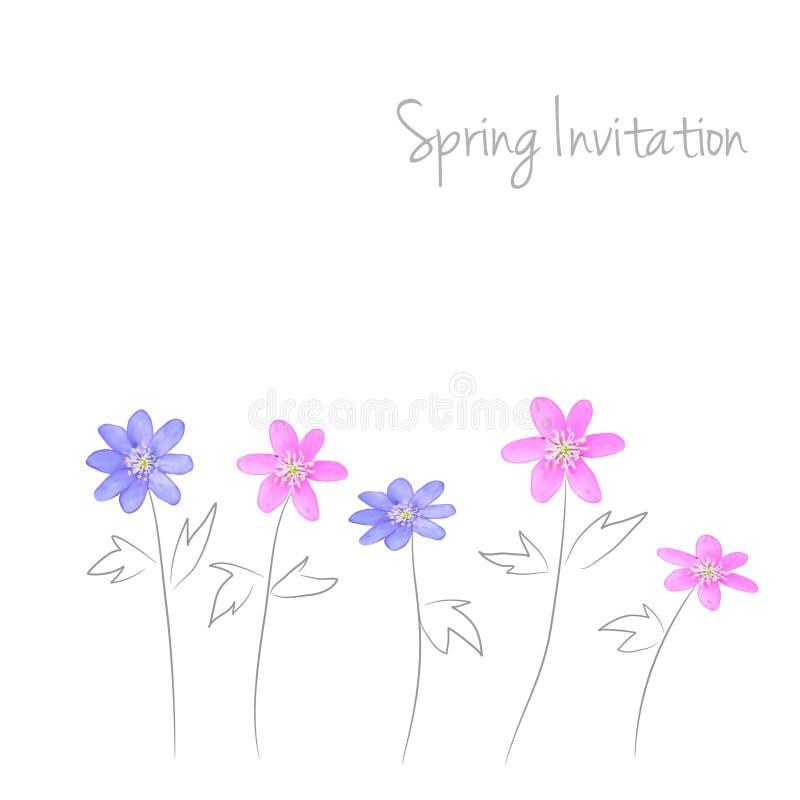 Cartão bonito da mola com flores da aquarela,  ilustração royalty free