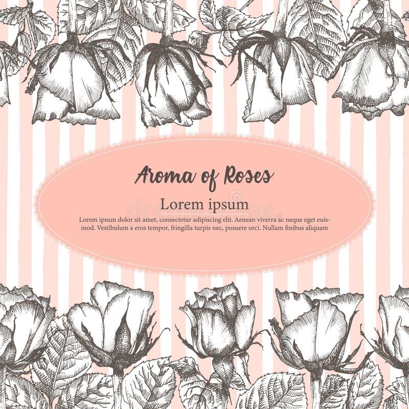 Cartão bonito do dia ou da etiqueta de Valentim com esboço da flor de Rosa em gravar o fundo bonito da ilustração do vetor do vin ilustração stock