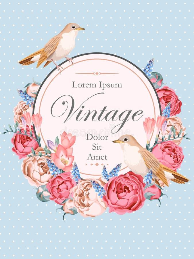 Cartão bonito do vetor do vintage com rouxinóis ilustração stock