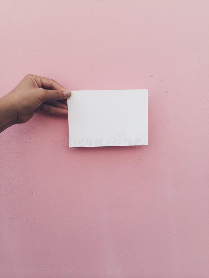 Cartão branco da posse da mão no fundo cor-de-rosa da parede fotografia de stock