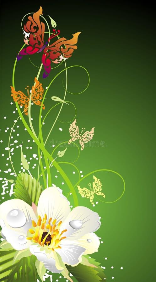 Cartão com borboletas ilustração royalty free