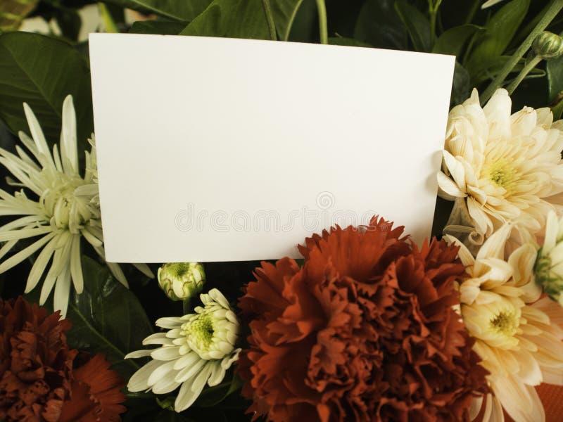 Cartão com flor fotos de stock royalty free