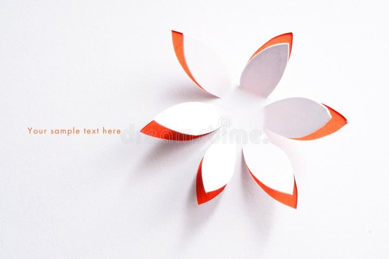 Cartão com flor de papel fotografia de stock royalty free
