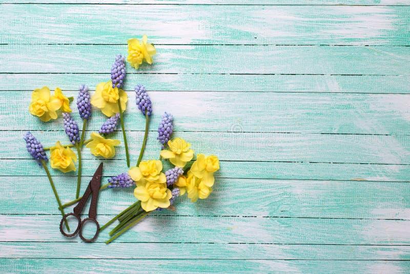 Cartão com flores da mola imagens de stock royalty free