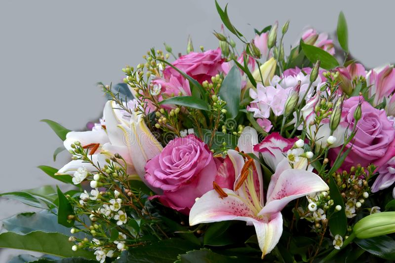 Cartão com flores de Rosa imagem de stock royalty free