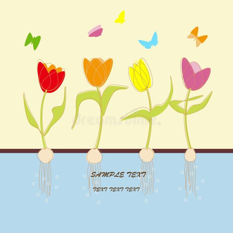 Cartão com flores do tulip ilustração royalty free