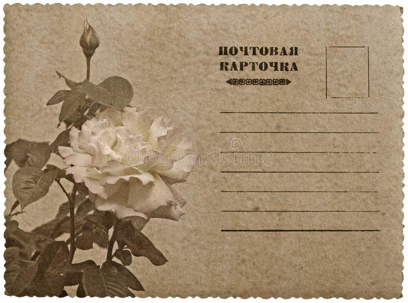 Download O Cartão Com Aumentou. Língua De Russo Ilustração Stock - Ilustração de projeto, letra: 29833732