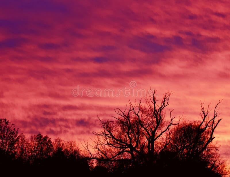 Cartão com um céu vívido bonito no por do sol imagens de stock