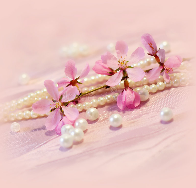 Cartão cor-de-rosa imagens de stock royalty free