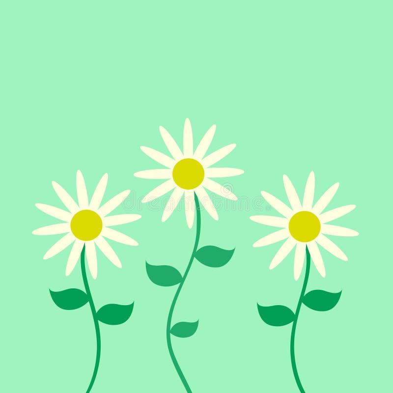 Cartão da flor ilustração royalty free