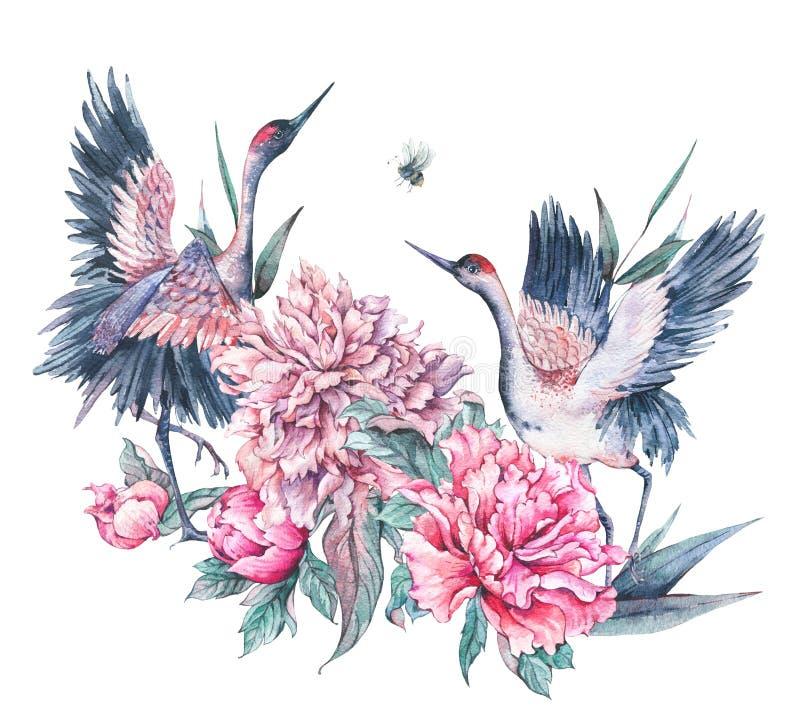 Cartão da natureza da aquarela com guindaste e as peônias cor-de-rosa ilustração royalty free