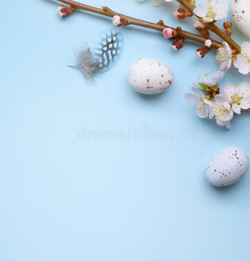 Cartão da Páscoa com ovos da páscoa coloridos e flowersl do sprin na tabela azul Vista superior com espaço para seus cumprimentos imagens de stock