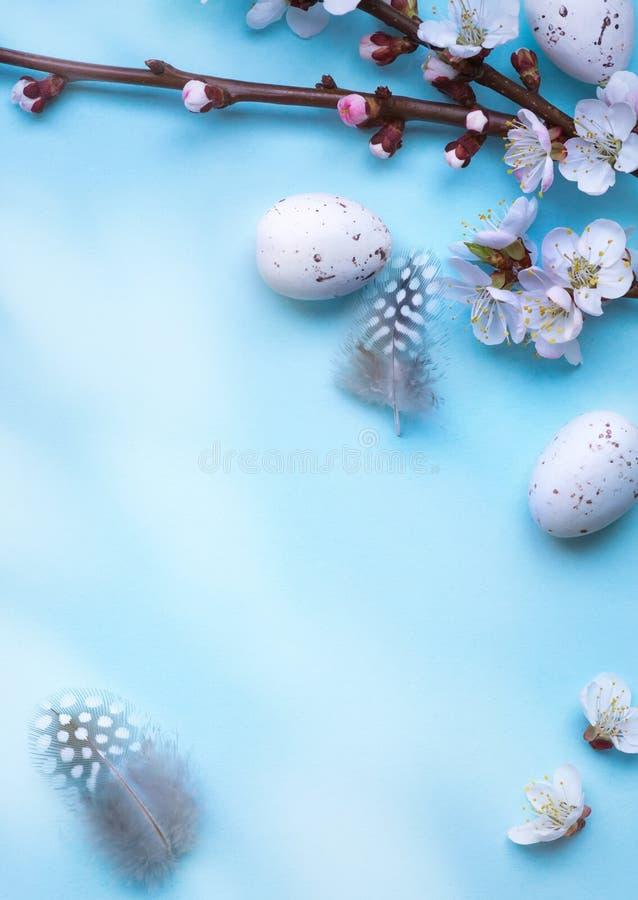 Cartão da Páscoa com ovos da páscoa coloridos e flowersl do sprin na tabela azul Vista superior com espaço para seus cumprimentos fotos de stock royalty free