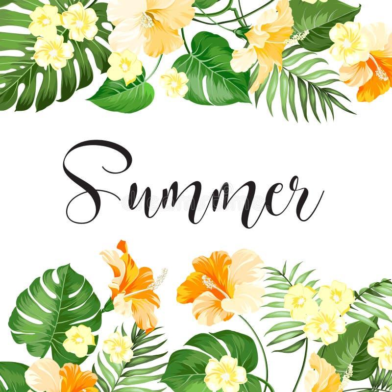 Cartão da venda do verão ilustração stock