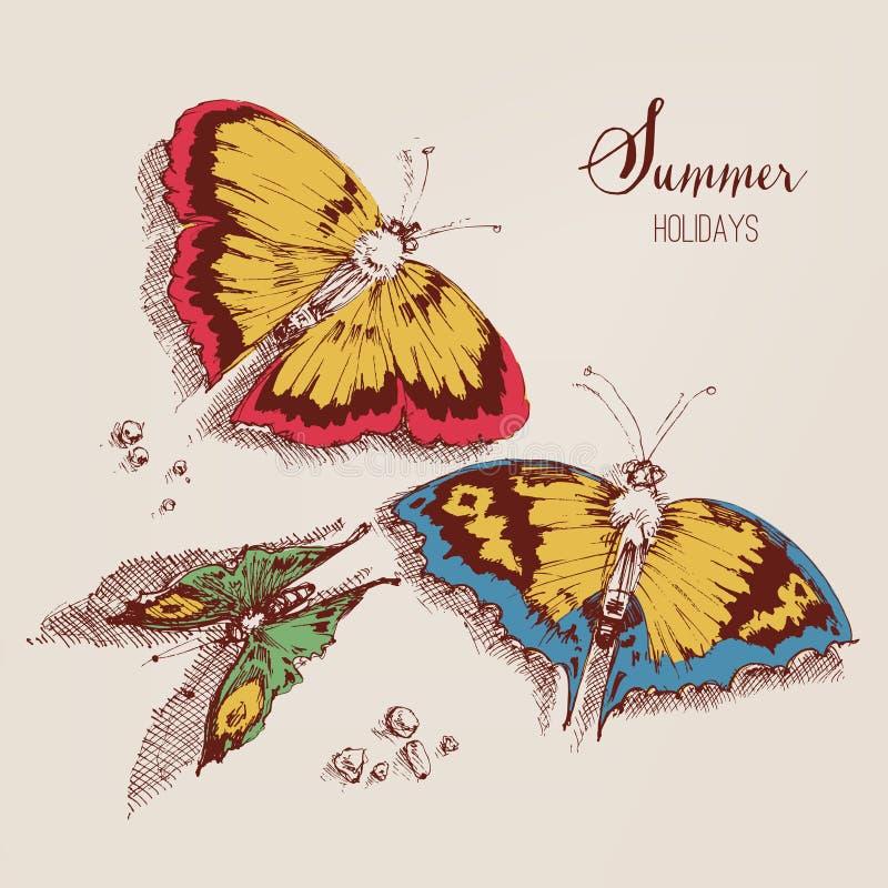 Cartão das borboletas do verão ilustração do vetor
