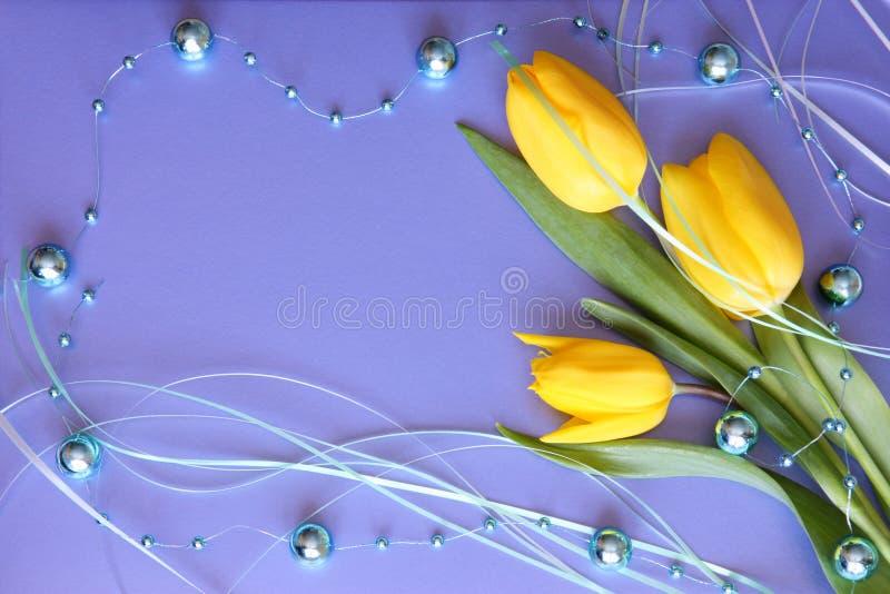 Cartão das tulipas - dia de mães ou foto conservada em estoque de Easter fotografia de stock
