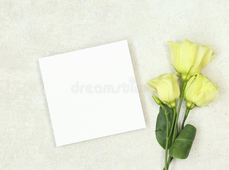 Cartão de casamento do modelo com rosas imagens de stock