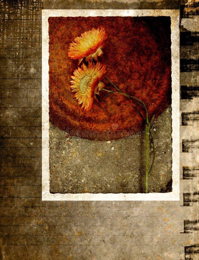 Cartão de Grunge com flor ilustração do vetor
