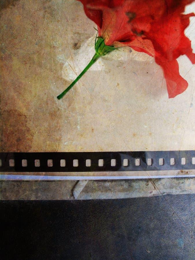 Cartão de Grunge com flor no.4 ilustração royalty free