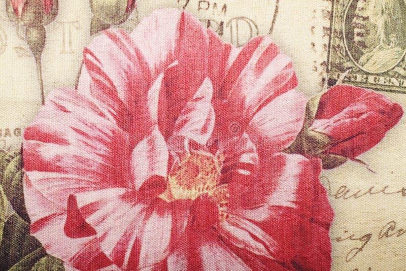 Cartão de Rosa do vintage imagens de stock royalty free
