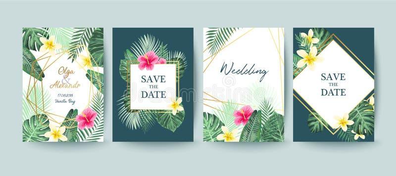 Cartão de verão Excepto a tâmara Folhas de palmeira ilustração do vetor