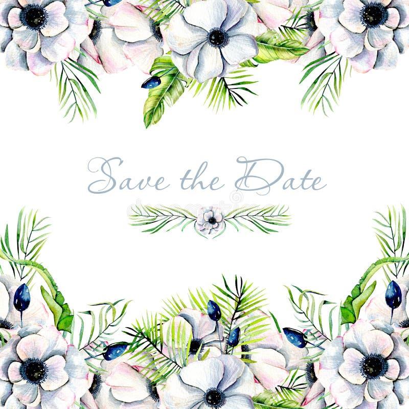 Cartão do design floral com as anêmonas brancas da aquarela e as ervas verdes ilustração royalty free