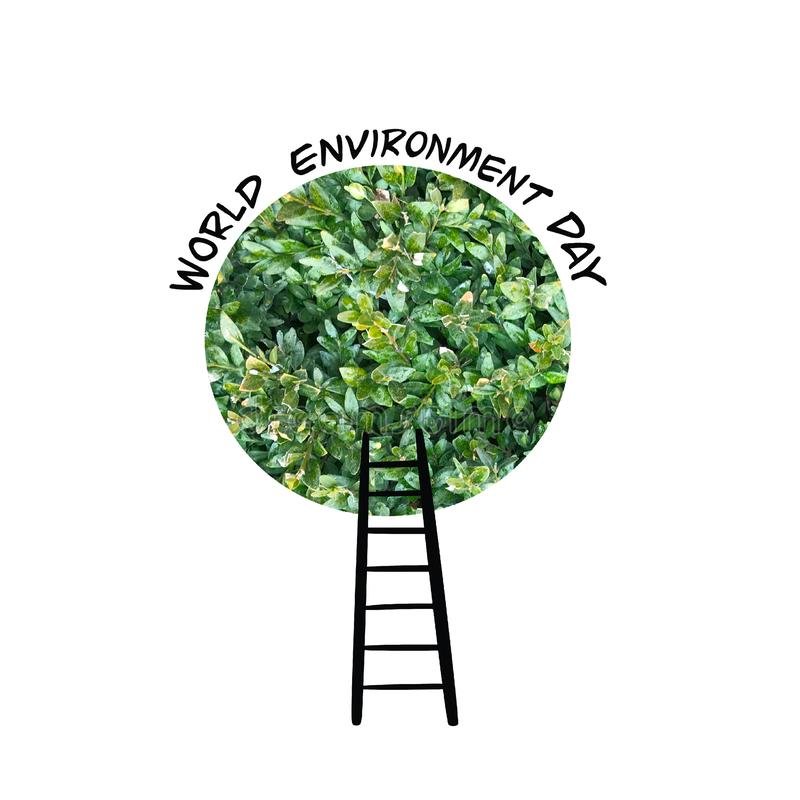 Cartão do dia de ambiente de mundo com a coroa e as escadas verdes da árvore ilustração royalty free