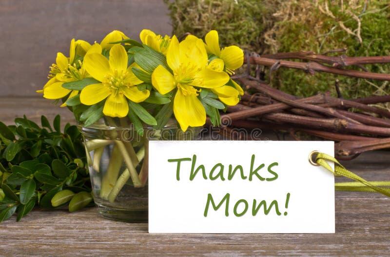 Download Dia do ` s da mãe foto de stock. Imagem de notas, mola - 29839956