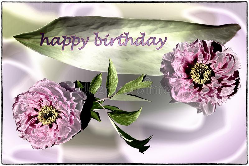 Cartão do feliz aniversario com as peônias em lilás, no rosa e em verde fotos de stock royalty free