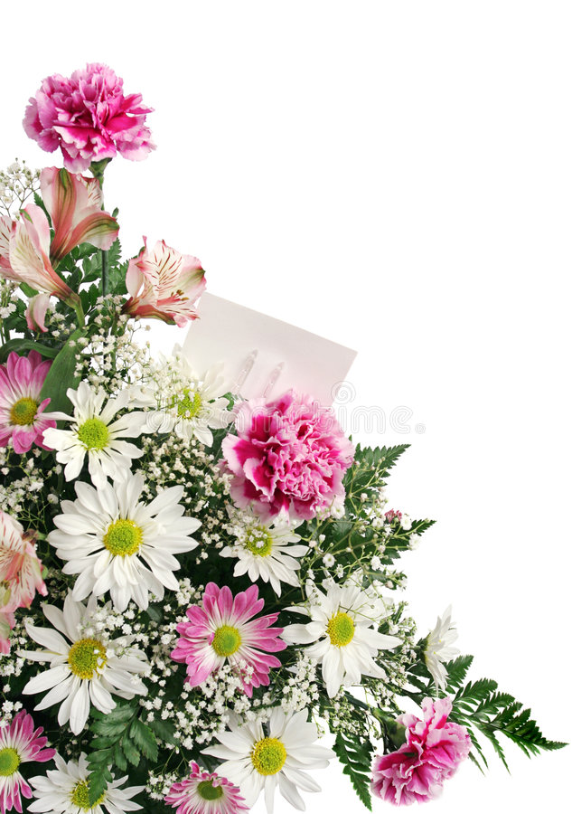 Cartão do presente da beira da flor fotos de stock royalty free