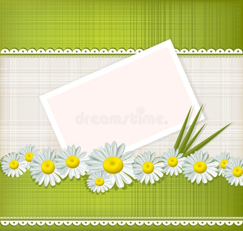 Cartão do vetor com margaridas ilustração stock