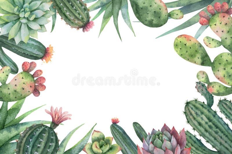 Cartão do vetor da aquarela dos cactos e das plantas suculentos isolados no fundo branco ilustração royalty free